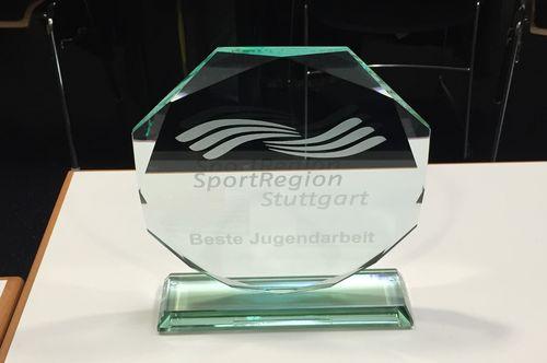 Handball   SportRegion zeichnet TuS Metzingen aus
