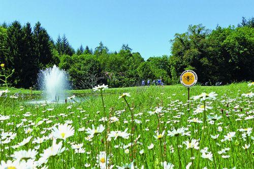 Sport und Natur | Golfclubs fördern Artenvielfalt in Baden-Württemberg